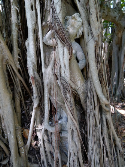 Statue in banyon tree roots at the Ringling Museum