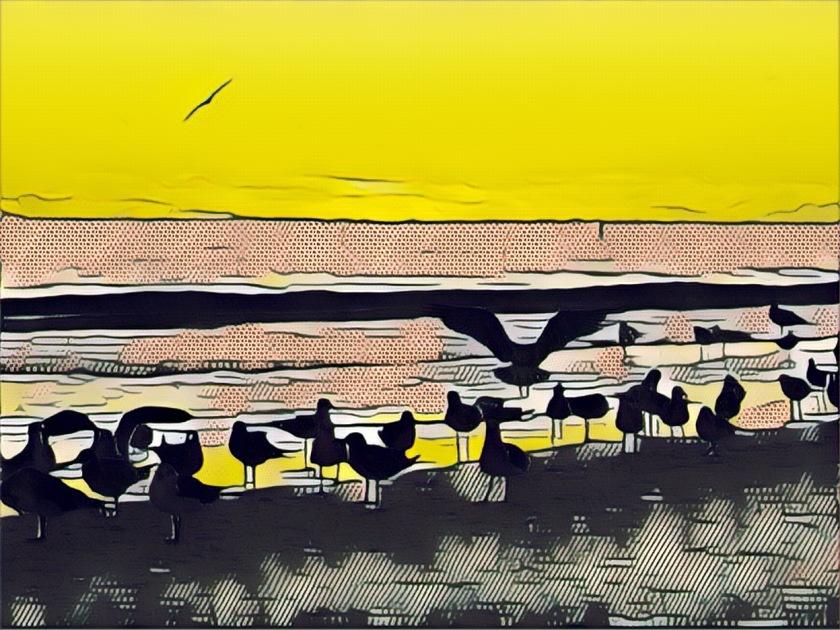 artsy-lido-birds-2