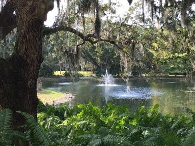 ringling-pond