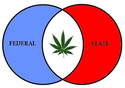 Federalism-Marijuana