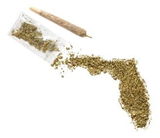 marijuana-florida-2-Large